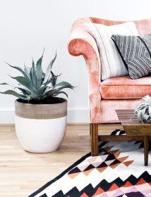 rug, sofa, plant - moodboardnyc.tumblr.com