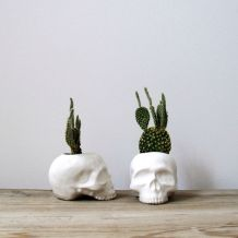 skull planters - bloodandchampagne.com