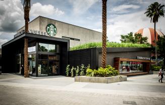 Plant The Future - Starbucks Downtown Disneyworld - Orlando Florida - plantthefuture.com