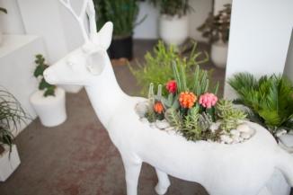 Deer at Plant The Future - entouriste.com