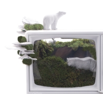 Plant The Future - Good News Terrarium - plantthefuture.com