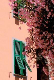 Riomaggiore, 5 Terre, Italy - picasaweb.google.com