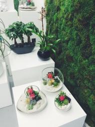 Plant The Future - newyorkaise.com